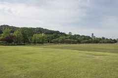 Cemitério nacional de Seoul, Seoul, Coreia do Sul foto de stock royalty free