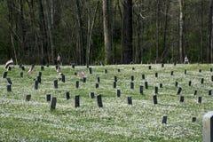 Cemitério no hospital mental foto de stock royalty free