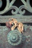 Cemitério Pere Lachaise Imagens de Stock