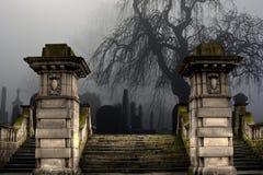 Cemitério velho em um dia nevoento foto de stock