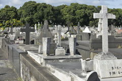 Cemiterio font Caju Photos stock