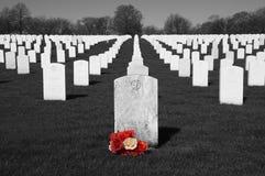 Cemitério dos veteranos, Memorial Day, feriado nacional Fotografia de Stock Royalty Free