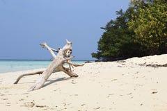 Cemoro Kecil wyspa zdjęcia royalty free