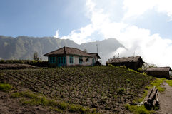 Cemoro Lawang - Indonesia Royalty Free Stock Image