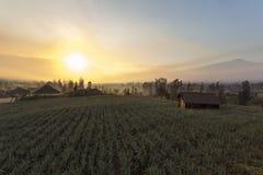 Cemoro lawang sunrise stock photo