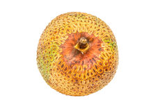 Cempedak Fruit IV. Artocarpus integer, commonly known as cempedak, a fruit native to South East Asia region stock photo