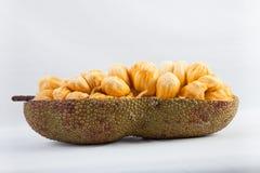 Cempedak Integra lub Artocarpus Zdjęcie Stock