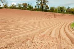 Cenário agrícola da primavera no campo inglês Imagem de Stock Royalty Free