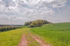 Cenário agrícola da primavera no campo inglês Foto de Stock Royalty Free