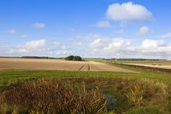 Cenário agricultural Fotos de Stock