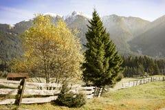 Cenário alpino no Tirol austríaco Fotografia de Stock