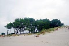 Cenário Báltico da natureza do sirene do cuspo Imagem de Stock Royalty Free