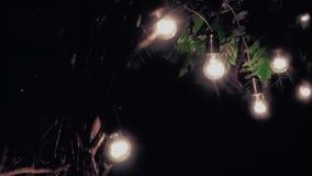 Cenário bonito, arco, iluminado por lâmpadas na noite video estoque