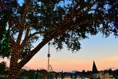 Cenário bonito com árvore iluminada, árvores de Natal sobre o lago, montanha russa no fundo do por do sol em SeaWorld imagem de stock royalty free