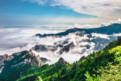 Cenário bonito com névoa da manhã na cimeira de Sorakshan em Coreia do Sul fotos de stock
