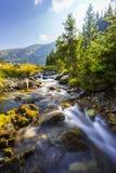 Cenário bonito da montanha nos cumes de Transylvanian no verão Fotos de Stock