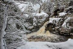 Cenário bonito do inverno Imagens de Stock Royalty Free