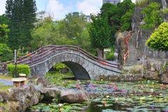 Cenário bonito do jardim de flores e de folhas de lótus com ponte de pedra Foto de Stock Royalty Free