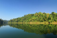 Cenário bonito na floresta tropical real de Belum em Malásia Fotografia de Stock Royalty Free