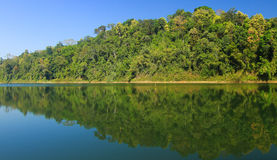 Cenário bonito na floresta tropical real de Belum em Malásia Fotos de Stock Royalty Free