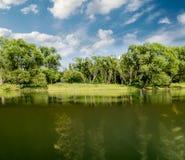 Cenário bonito no lago em um dia de verão ensolarado Imagem de Stock Royalty Free