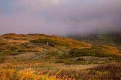 Cenário bonito no por do sol e na névoa Imagem de Stock Royalty Free