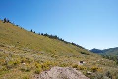 Cenário cênico da montanha com um veículo 4WD Fotos de Stock