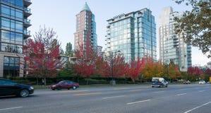 Cenário da cidade dos arranha-céus e folhagem de outono de vidro, folhas alaranjadas e amarelas vermelhas coloridas no outono, Ca imagens de stock royalty free