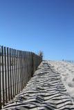 Cenário da duna de areia Fotografia de Stock Royalty Free