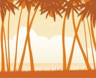 Cenário da excursão da zona tropical Fotos de Stock