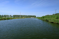 Cenário da lagoa no selvagem Foto de Stock