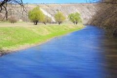 Cenário da mola com água de fluxo fotografia de stock royalty free