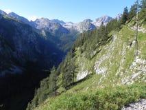 Cenário da montanha Imagem de Stock Royalty Free