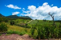 Cenário da montanha com céu nebuloso foto de stock royalty free
