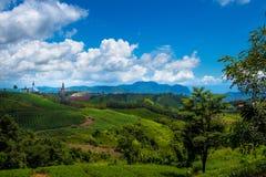 Cenário da montanha com céu nebuloso fotografia de stock