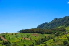 Cenário da montanha com céu nebuloso fotografia de stock royalty free