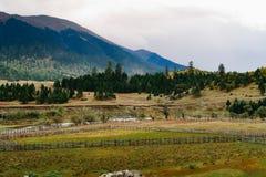 Cenário da montanha da estrada na movimentação do turismo do xizang Fotografia de Stock Royalty Free