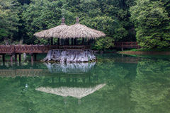 Cenário da montanha de Taiwan Alishan Fotografia de Stock Royalty Free
