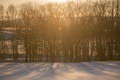 Cenário da neve do Hokkaido, Biei imagens de stock royalty free