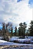 Cenário da paisagem, 17 de um estado a outro, mastro a Phoenix, o Arizona, Estados Unidos imagem de stock
