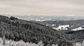 Cenário da região de Kysuce do inverno em Eslováquia imagem de stock