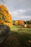 Cenário da Suécia da parte superior da árvore da natureza do monte durante o outono Fotos de Stock