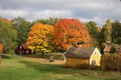 Cenário da Suécia da parte superior da árvore da natureza do monte durante o outono Foto de Stock