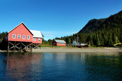 Cenário de Alaska fotografia de stock