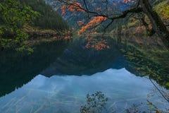 Cenário de Jiuzhaigou Fotografia de Stock Royalty Free