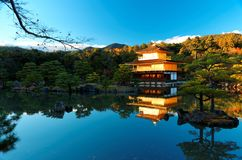 Cenário de Kinkakuji, um templo famoso da queda de Zen Buddhist em Kyoto Japão imagens de stock royalty free