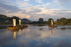 Cenário de Lishui Fotografia de Stock Royalty Free