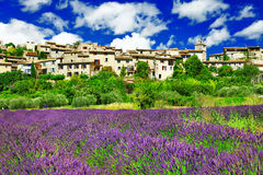 Cenário de Provence imagens de stock royalty free