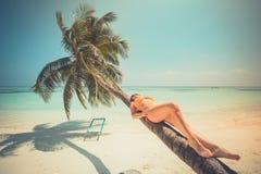 Cenário de surpresa, palma com balanço sobre o mar com a mulher que relaxa no tronco da palma, paisagem tropical do curso Conceit fotos de stock royalty free