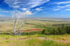 Cenário do campo de Wyoming Fotos de Stock Royalty Free